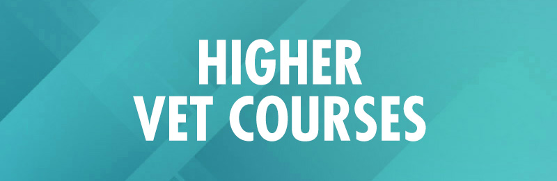 Higher-VET-courses