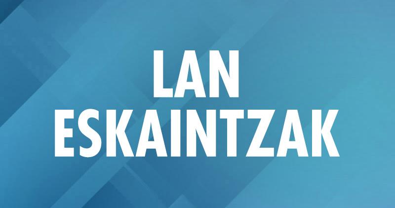 LAN-ESKAINTZAK